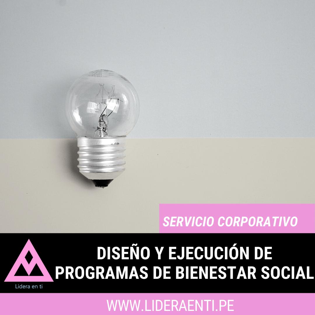 diseño y ejecucion de programas de bienestar social