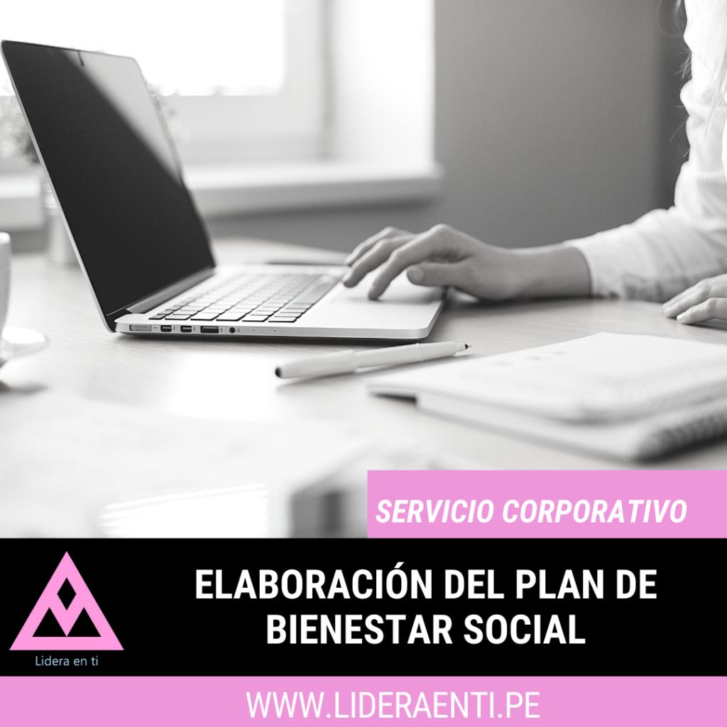 elaboracion del plan de bienestar social